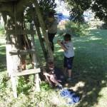 Cabane dans l'arbre / Treehouse (Josée Belhumeur)