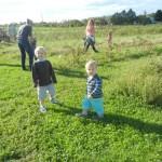Visite de ferme / Farm Visit (Gillian Murray)