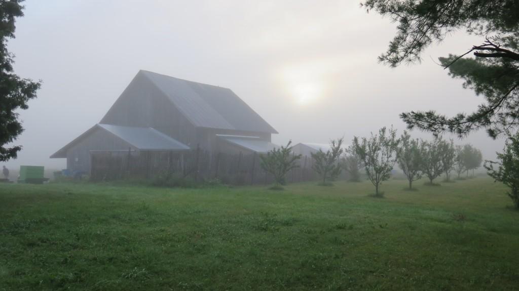 cropped-Brume-à-laube_Fog-At-Dawn_BIS.jpg