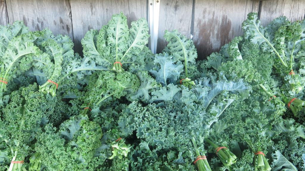 Mucho Kale