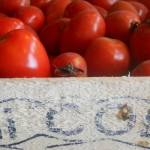 Tomates en boîte