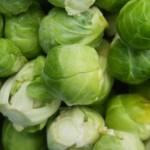 Choux de Bruxelles - Brussels Sprouts