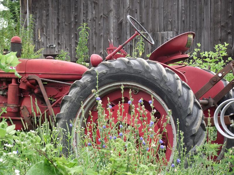 Vieux tracteur - Old Tractor