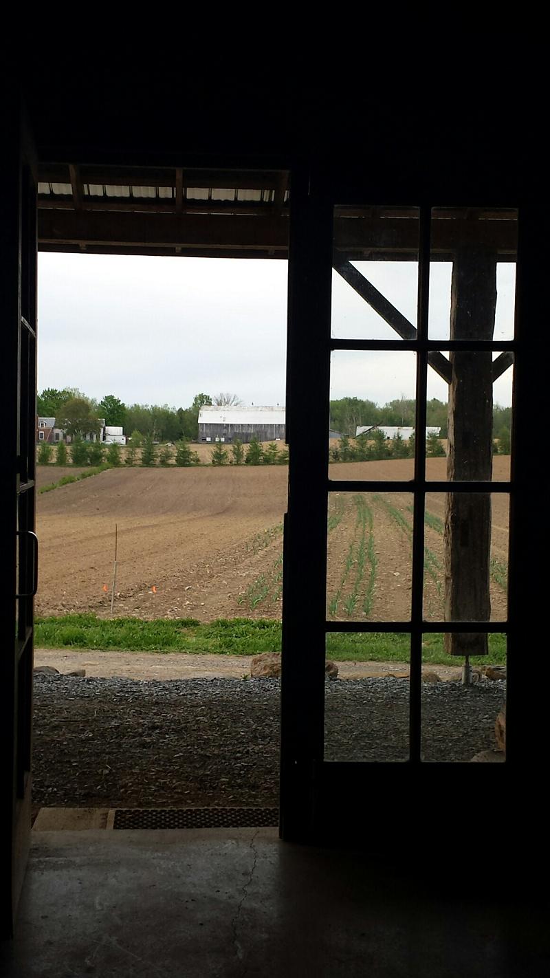 Vue printanière - Spring View