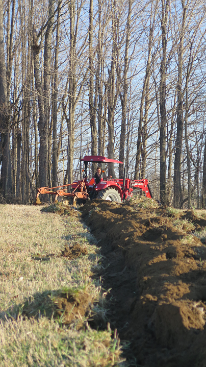 Premiers sillons - First furrows